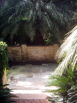 Before lanscaping architect project design installation pool arbors fountain in Austin and San Francisco